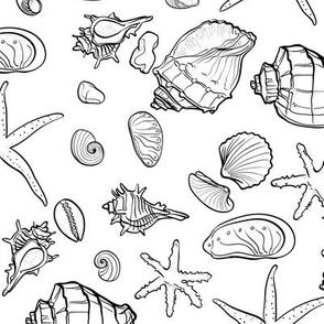 Shell Pattern 21x18