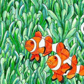 Clown Fish Watercolour