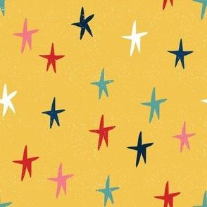 Christmas Cactus Coordinate - Stars