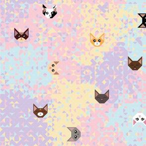 Kitty Grid