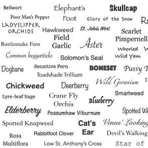 Plant List (Black on White)