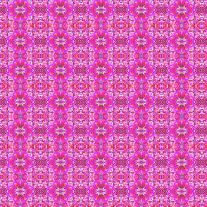 Hotsy Totsy Pink