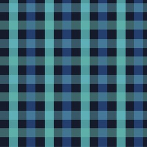 Chequered blue plaid