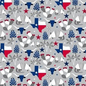 Symbols of Texas (Silver Extra Small)