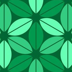 07656043 © R6lens leaf : Jk
