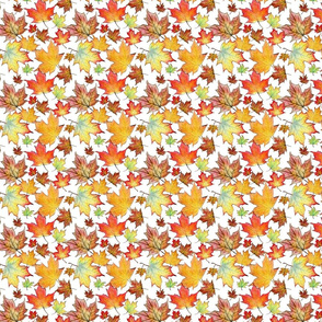 Autumn Maple Leaves 4 inch repeat