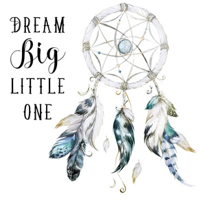 "27""x36"" Little Chief Dream Catcher 2 to 1 Yard of MInky"