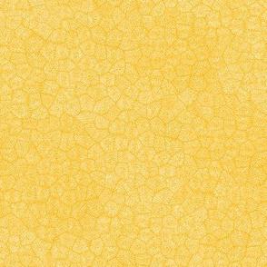"""simplified petoskey stone, white on saffron, 1/3"""""""
