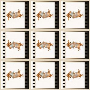 film 6in 6