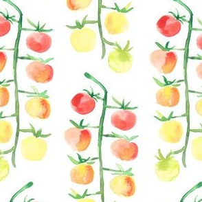 Little tomatoes in watercolor