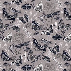 Dragonflies, Butterflies And Moths In Grey, Black And White - Small