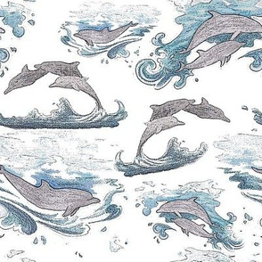 Dolphin sketches