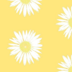 White on yellow Daisy Days