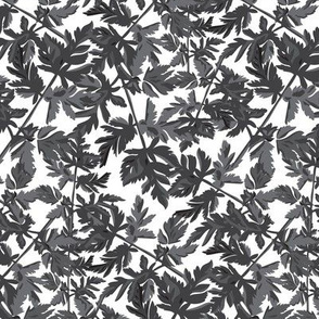 18-06J Leaf Leaves Black White Gray Grey  Tree Neutral Home Decor _ Miss Chiff Designs