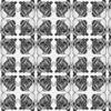7664758-snails-dance-clams-3-0-ed-ed-by-jaybee24