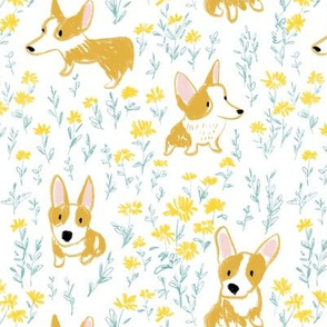 Corgi dogs and daisy florals