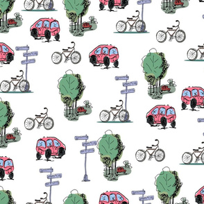 Cars and bicycles
