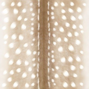 Fawn, Pale Spotted Coat, Mini