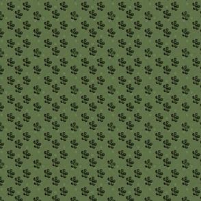 Eucalyptus Coordinate 4