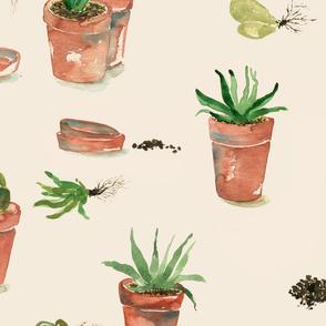 plant party_03