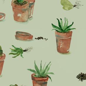 plant party_02