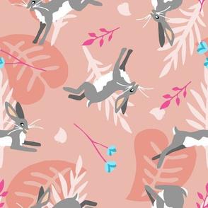 Hoppity Hop - Pink