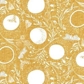Deluna (golden) MED