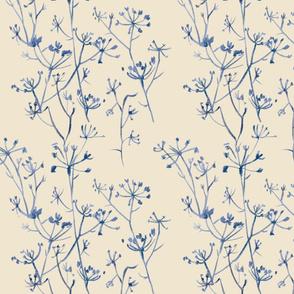 Blue fennel