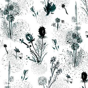 White and Black Winter Wild Flowers