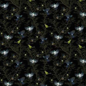 Bird repeat black