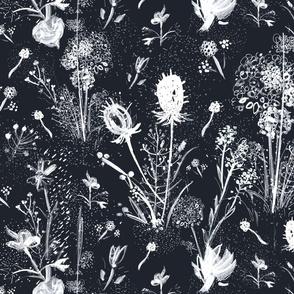 flower_night_black