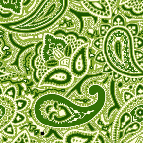 Persnickety Paisley ~ Groovy Green