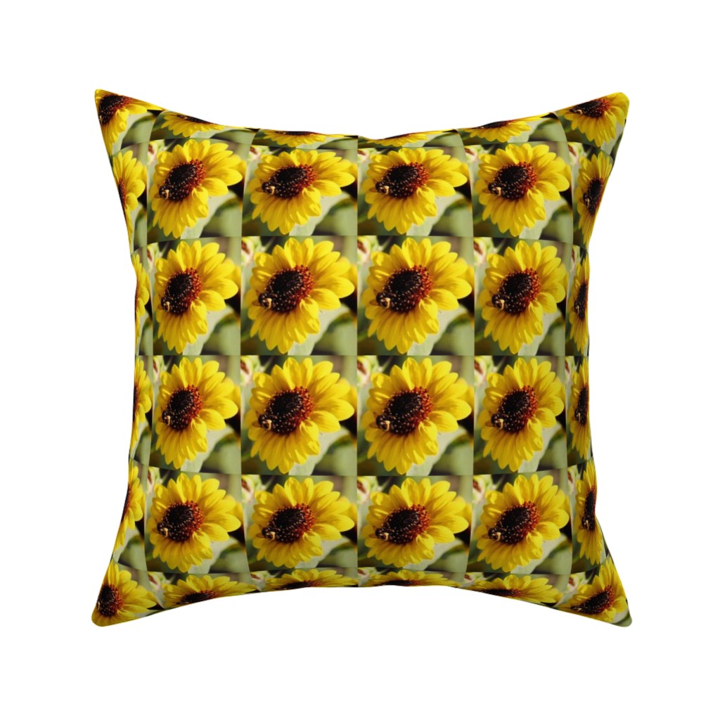 Catalan Throw Pillow featuring KRLGFP-BumbleBee3014-BASIC by karenspix