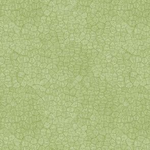 "simplified petoskey stone, white on moss, 1/4"""