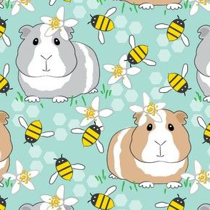 guinea-pigs-with-bees-on teal