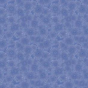 crazy lace agate in indigo blues