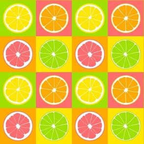 Four citrus fruits on squares.