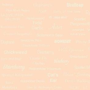 Plant List (Cream on Peach)