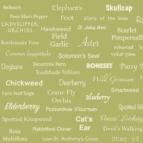Plant List (Cream on Olive)