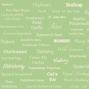 Plant List (Cream on Green)