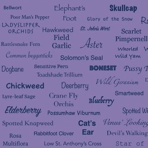 Plant List (Indigo on Purple)
