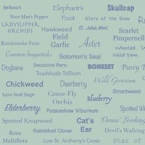 Plant List (Slate on Celadon)