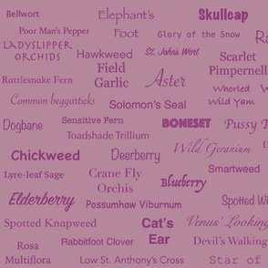 Plant List (Plum on Plum)