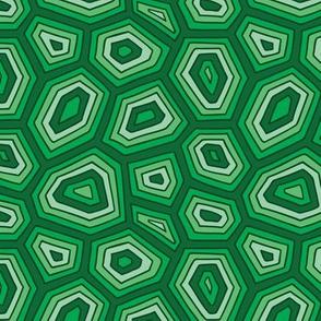 turtle_pattern2