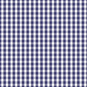 USA Flag Blue and White Gingham Checked
