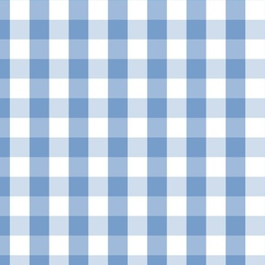 Classic Pale Blue Pastel Gingham Check