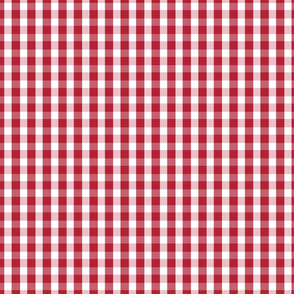 USA Flag Red and White Gingham Checked