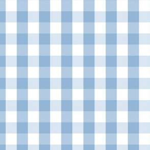 Airy Blue Gingham Check