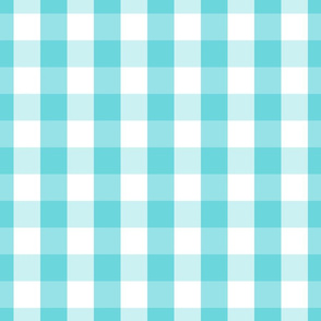 Pale Aqua Blue Gingham Check Pattern