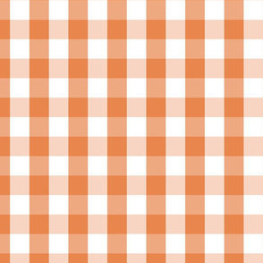 Nasturtium Orange Gingham Check Plaid